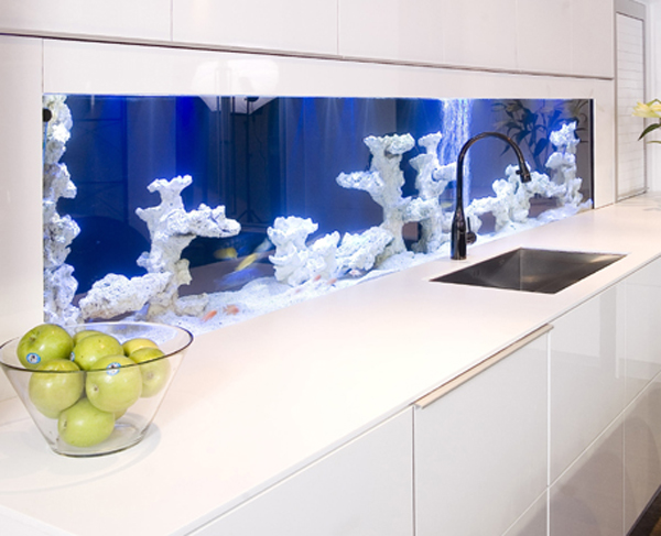 aquarium in kitchen idea