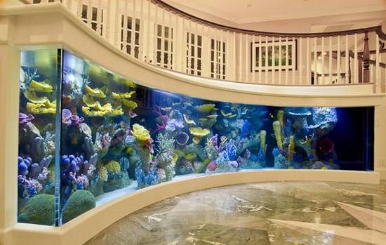 entry aquarium