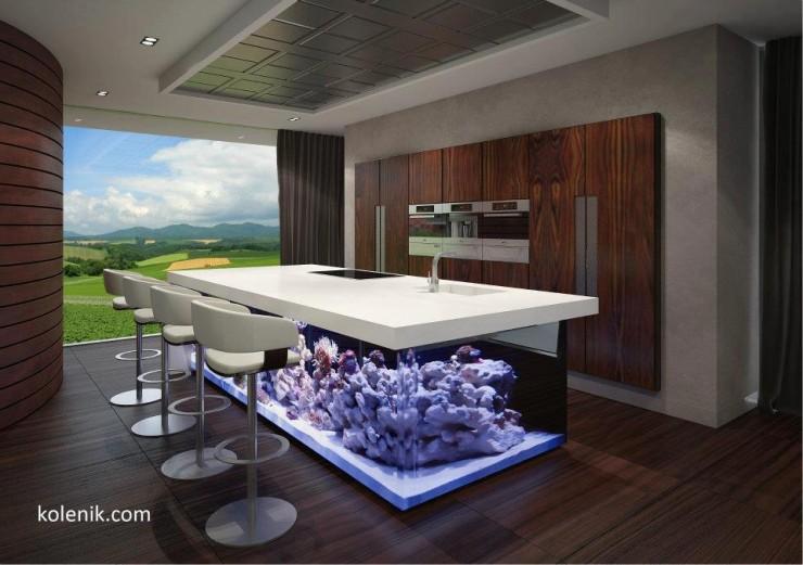 kitchen island aquarium