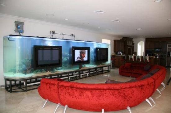 room 20 decorating ideas with aquarium