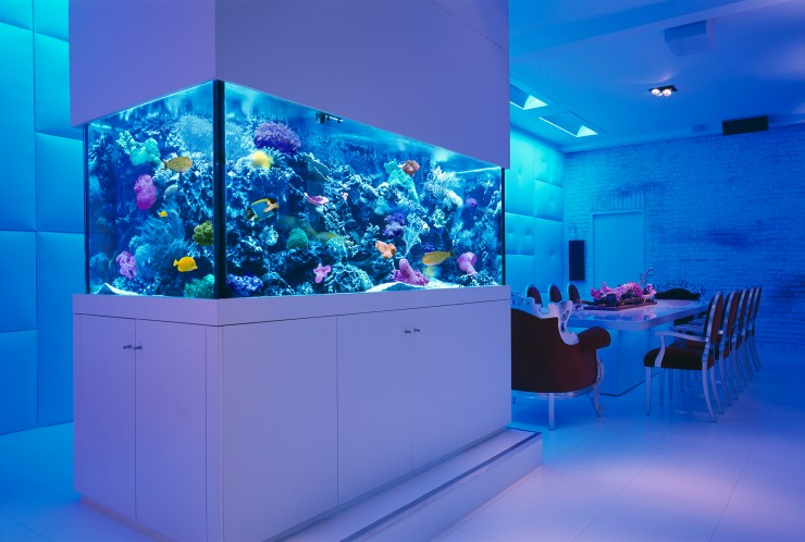 room 3 decorating ideas with aquarium