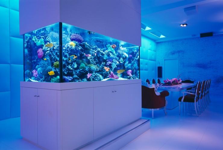 room 3 decorating ideas with aquarium