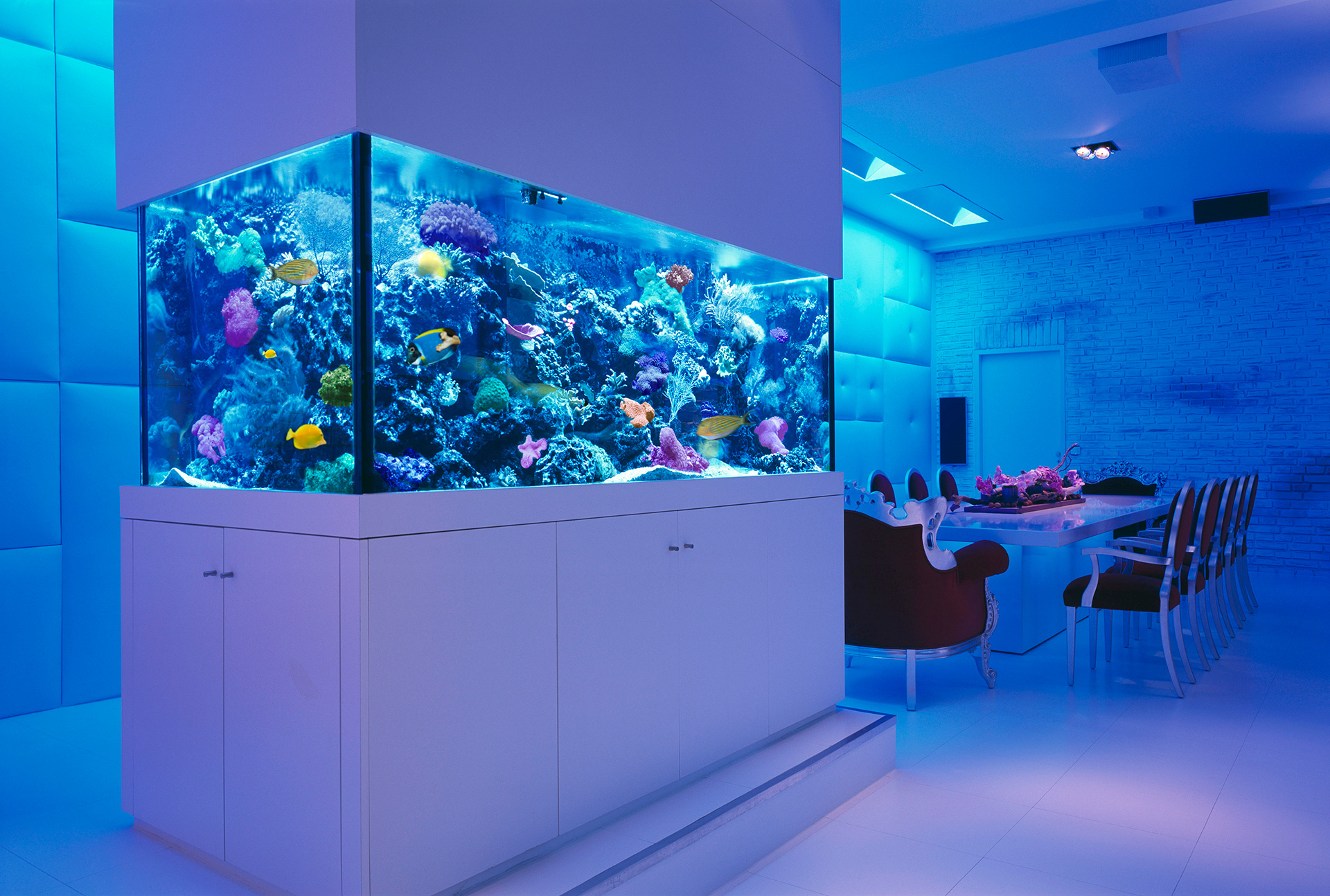 Aquarium For Home : ... Ideas How To Beautify Your Home With Fish Tank World inside pictures