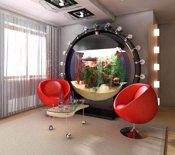 room 4 decorating ideas with aquarium