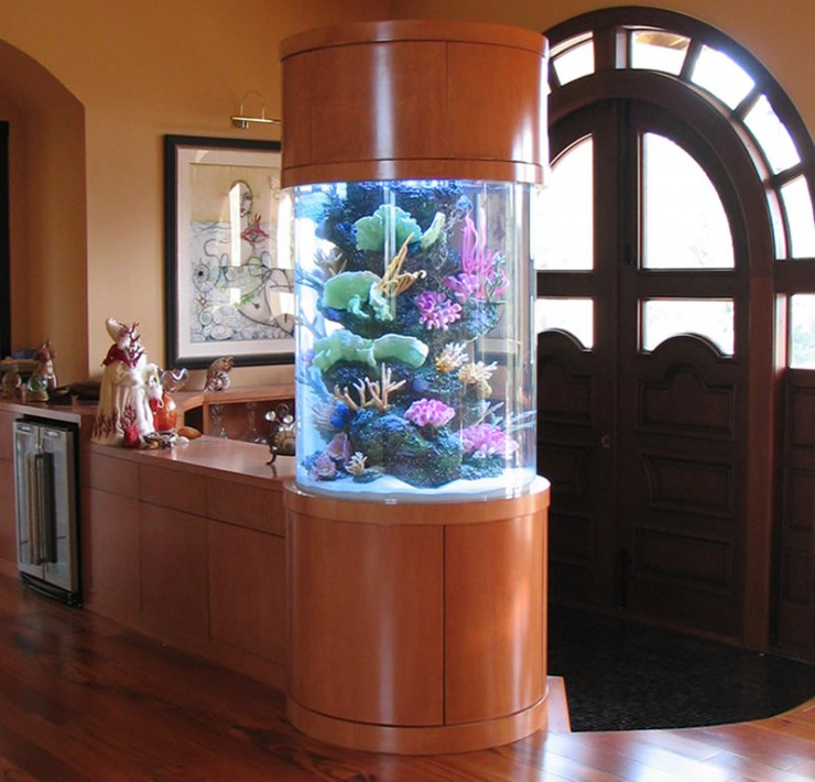 room 6 decorating ideas with aquarium