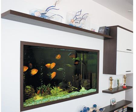 room 7 decorating ideas with aquarium
